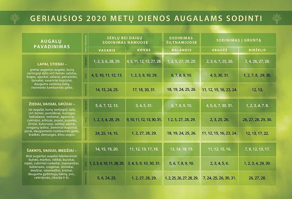sejos kalandorius, 2020 metu sejos kalendorius