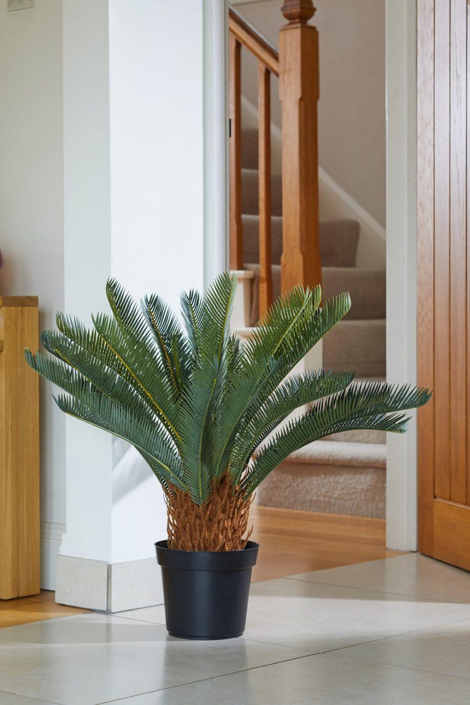 Dirbtinis augalas SAGO palmė